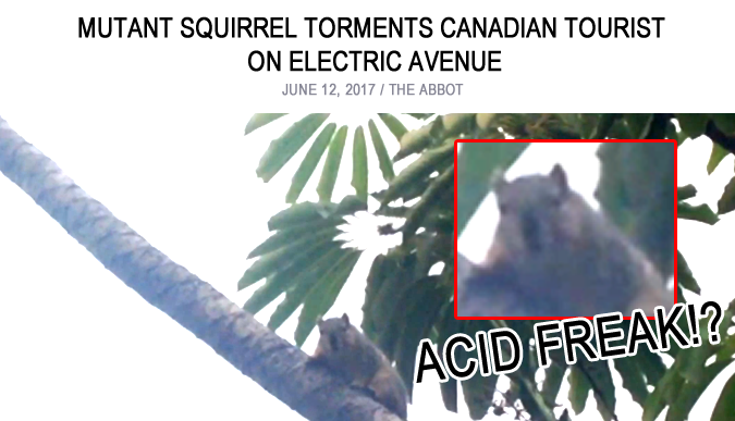 Tripping Squirrel Terrorizes Electric Avenue